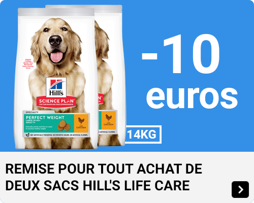 Hills Multibuy Dog