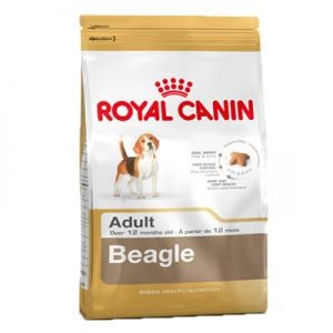 Royal Canin Beagle Adult Chien