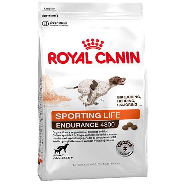 royal canin energy 4800 croquettes pour chiens actifs. Black Bedroom Furniture Sets. Home Design Ideas