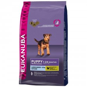 Eukanuba Growing Puppy Large Breed poulet pour chiot