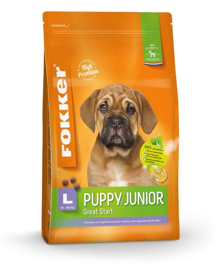 Fokker Chiot Puppy/Junior L