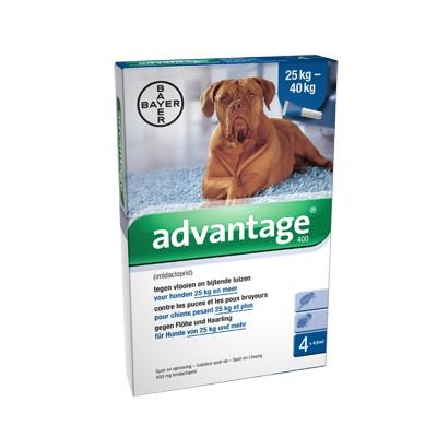 Advantage Nr. 400 pour chien XL