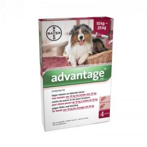 Advantage Nr. 250 pour chien L