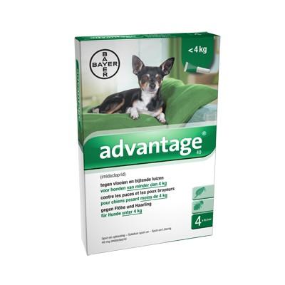 Advantage Nr. 40 pour chien S
