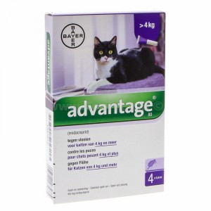 Advantage Nr. 80 pour chat ACTION TEMPORAIRE