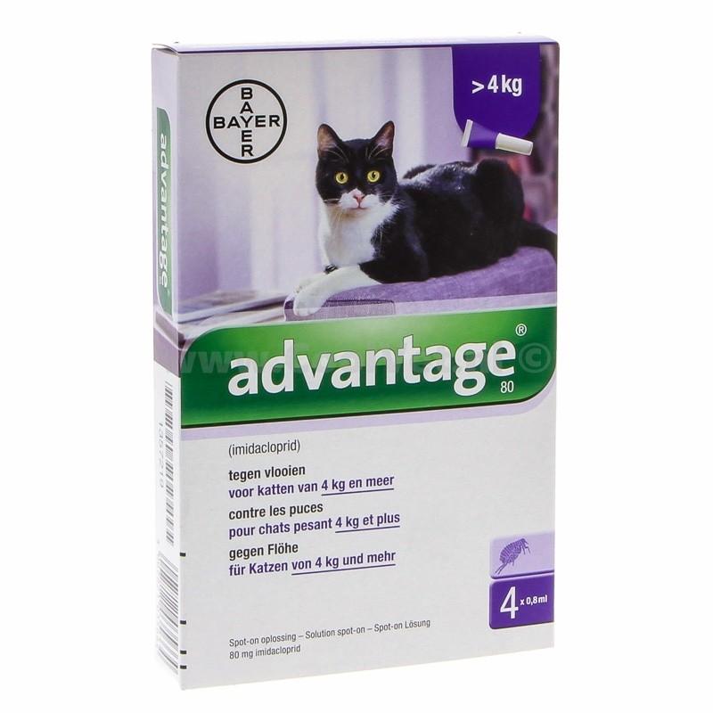 Advantage Nr. 80 pour chat ACTION TEMPORAIRE