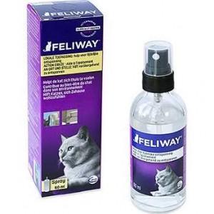 Feliway Spray Chat