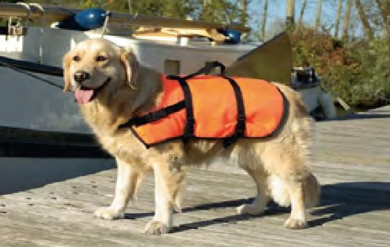 Zwemvest M voor de hond