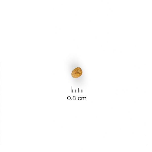Hill's Sterilised Mature Chat, au poulet