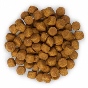 Hill's Puppy Agneau riz pour chiot
