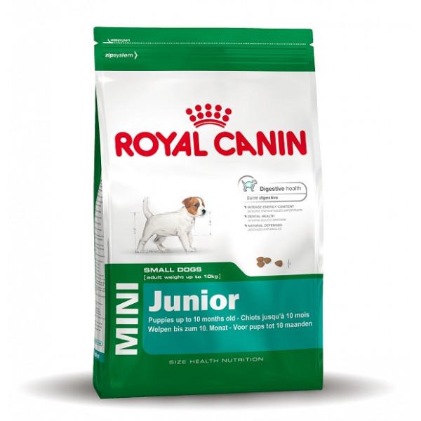 croquettes royal canin mini junior pour chiot. Black Bedroom Furniture Sets. Home Design Ideas