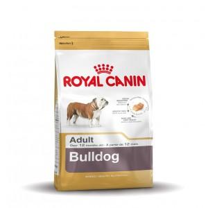 Royal Canin Bouledogue Anglais Adult pour chien
