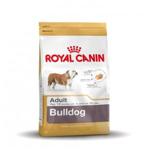 Royal Canin Bulldog Anglais Adult pour chien