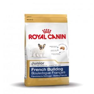 Royal Canin Bouledogue Français Junior pour chiot