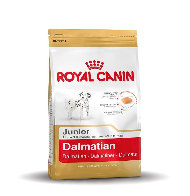 Royal Canin Dalmatien Junior pour chiot