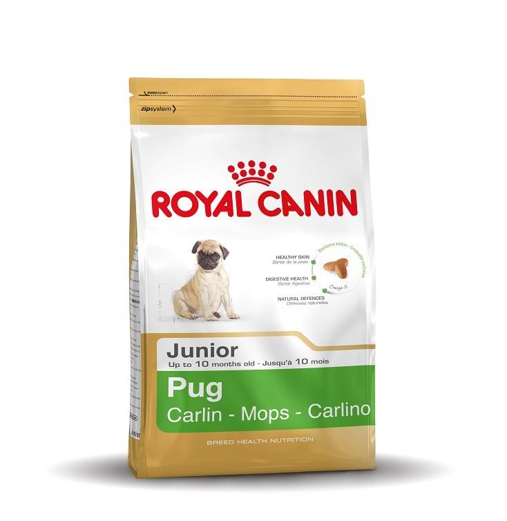 Royal Canin Carlin Junior pour chiot