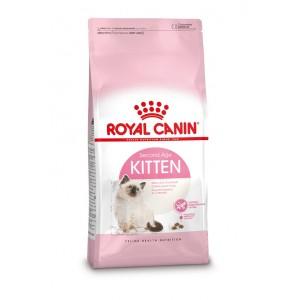 Royal Canin Chaton 36