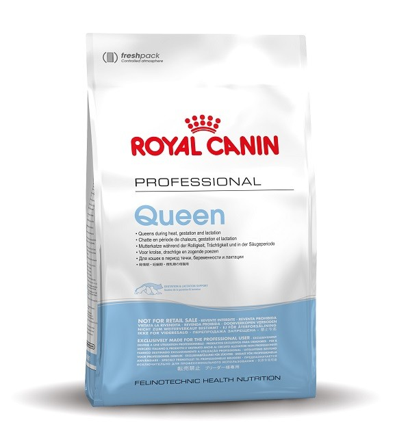 Royal Canin Chat Queen 34