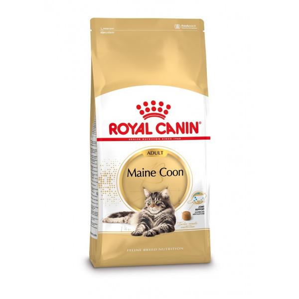 croquettes royal canin pour votre chat maine coon. Black Bedroom Furniture Sets. Home Design Ideas
