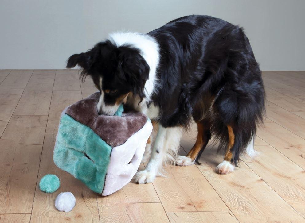Cube en Peluche (4 boules) pour chien