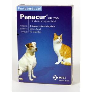 Panacur 250 Vermifuge pour chien et chat