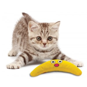 Petstages Catnip Boomerang Buddy pour chat