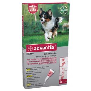 Advantix 250/1250 pour chien