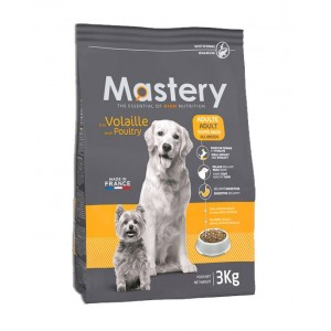 Mastery Adult Dog pour le chien