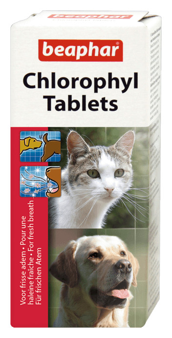 Beaphar comprimés à la chlorophylle pour chien et chat