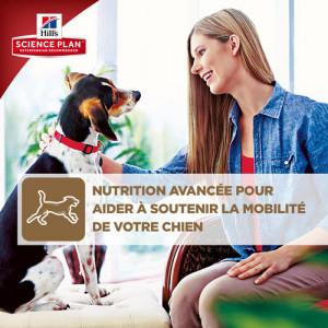 Hill's Healthy Mobility Medium Adult pour chien (au poulet)