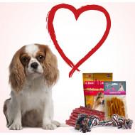 Le pack Saint-Valentin pour chien de taille moyenne