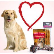 Le pack Saint-Valentin pour chien de grande taille