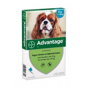Advantage Nr. 100 pour chien M