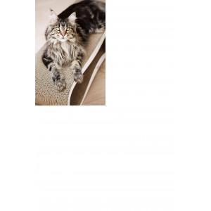 MyKotty LUI - Griffoir ondulé en carton pour chat