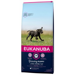 Eukanuba Growing Puppy Large Breed au poulet pour Chiot
