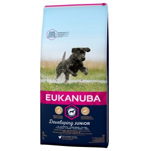Eukanuba Developing Junior Large Breed au poulet au Chien
