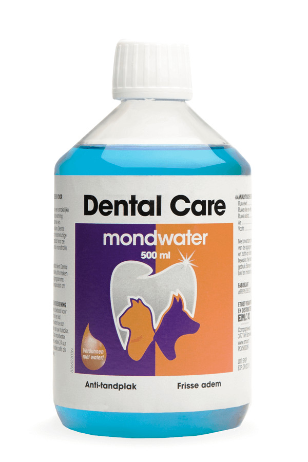 Sire Dental Care