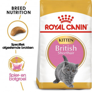 Royal Canin Kitten British Shorthair pour chaton