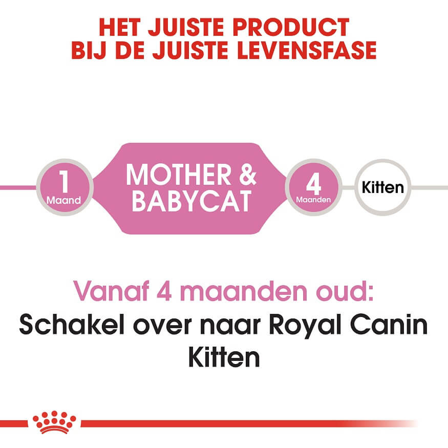 Royal Canin Chaton Babycat 34