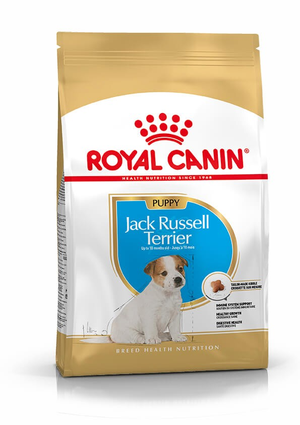 Royal Canin Jack Russell Junior pour chiot