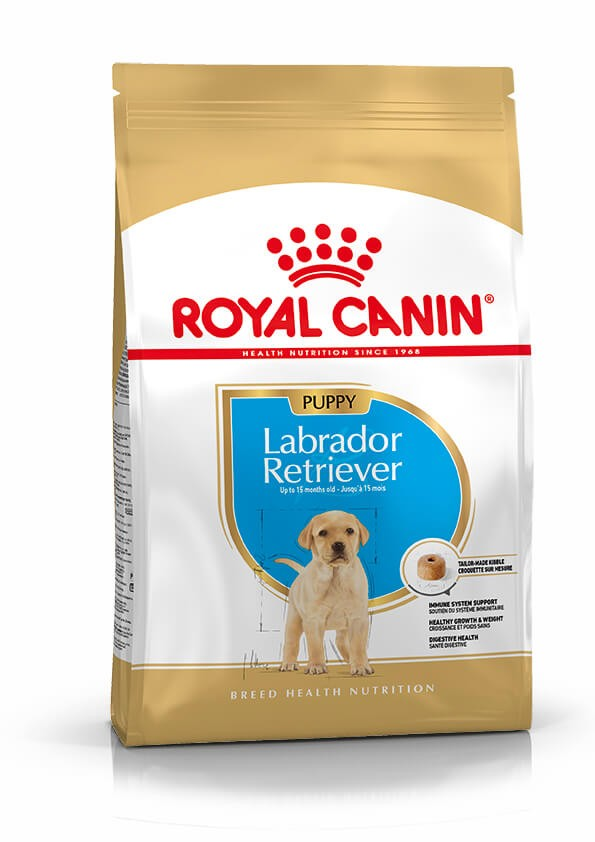 Royal Canin Labrador Retriever Junior pour chiot