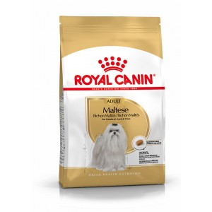 Royal Canin Bichon Maltais pour chien