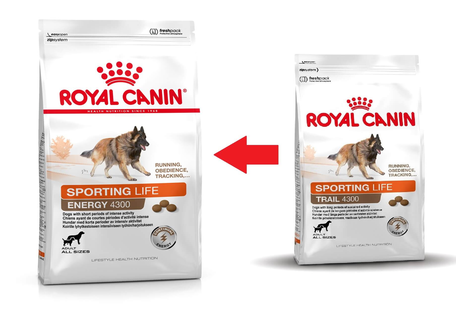 Royal Canin Sporting Life Trail 4300 pour chien
