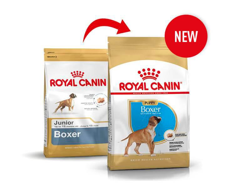 Royal Canin Boxer Puppy pour chiot