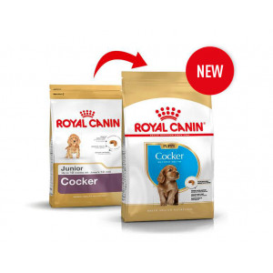 Royal Canin Cocker Spaniel Puppy pour chiot