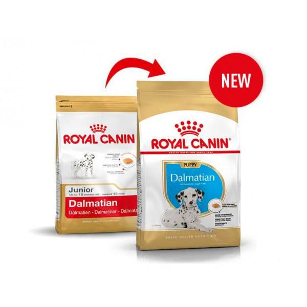 croquettes royal canin dalmatien puppy 25 pas cher. Black Bedroom Furniture Sets. Home Design Ideas