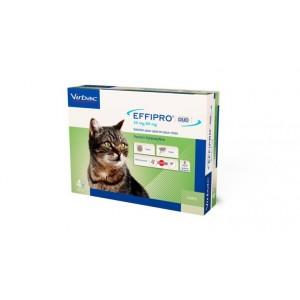 Effipro Duo Spot-on voor katten tot 6 kg