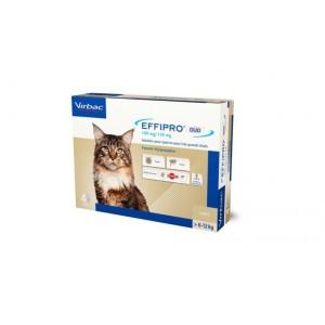 Effipro Duo Spot-on voor katten van 6 tot 12 kg