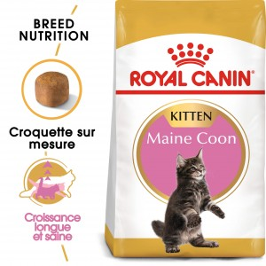 Royal Canin Chaton Maine Coon 36