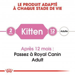 Royal Canin Chaton 36